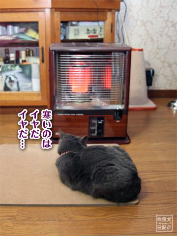 20120301_大雪9