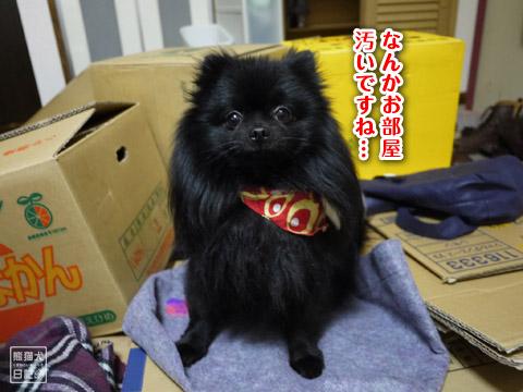20120324_日帰りツアー4