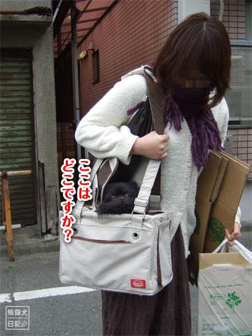 20120324_日帰りツアー1