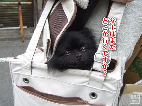 20120324_日帰りツアー2