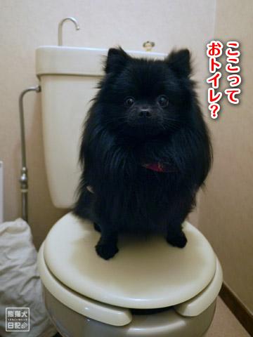 20120324_日帰りツアー7