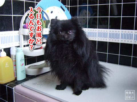20120408_真熊風呂1
