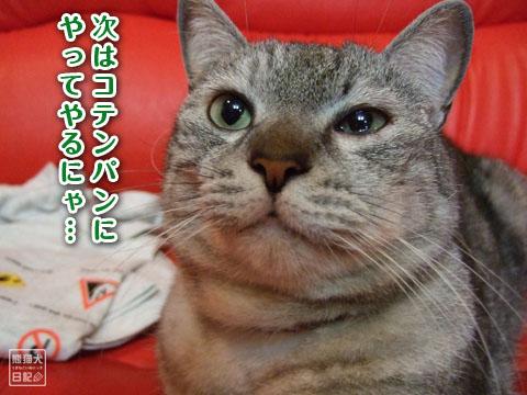 20120417_寿喜3