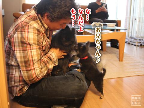 20120420_菩提と真熊15