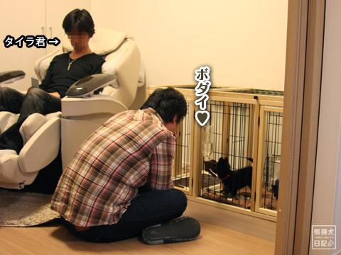 20120420_菩提と真熊14