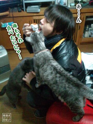 20120422_寿喜1