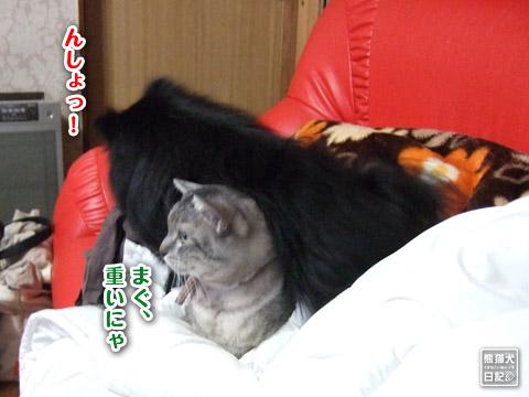20120422_寿喜8