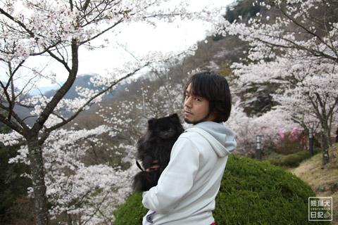 20120424_大月お花見6