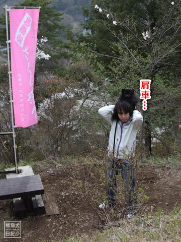20120424_大月お花見8