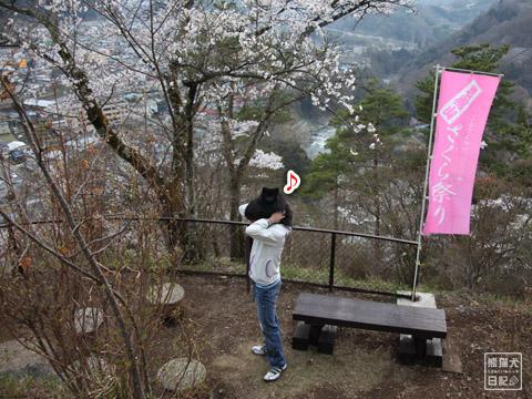 20120424_大月お花見9