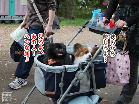 20120501_昭和記念公園3