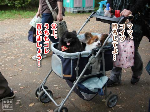 20120501_昭和記念公園4