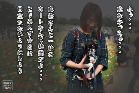 20120501_昭和記念公園12
