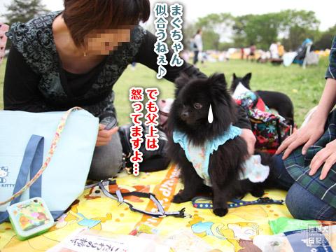 20120504_真熊の女装3