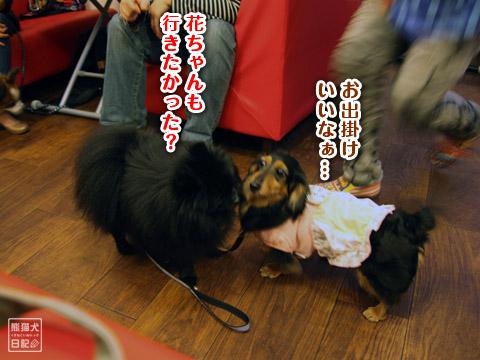 20120505_番外編7