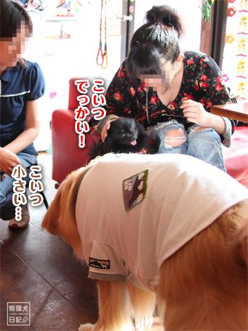 20120509_タカコ10