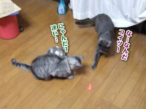 20120513_寒い土曜日2