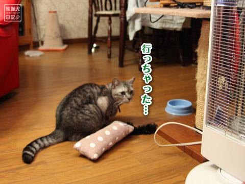 20120517_いただきもの10