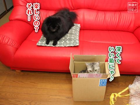 20120518_箱5