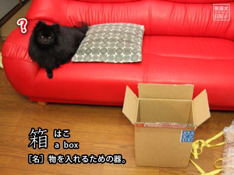 20120518_箱2