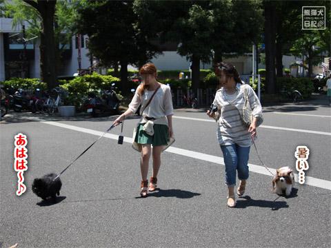 20120520_横浜へ5