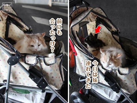 20120520_横浜へ2