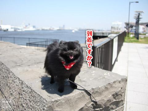20120520_横浜へ3