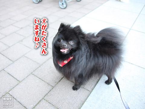 20120520_横浜へ4