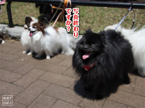 20120523_山下公園6