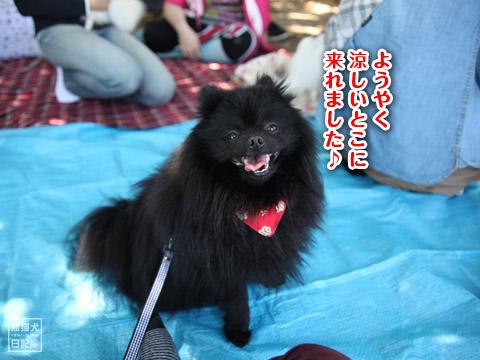20120523_山下公園12