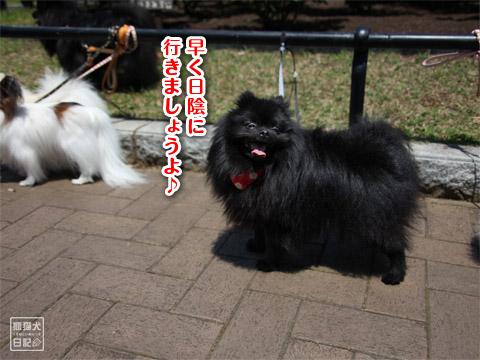 20120523_山下公園8