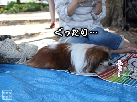 20120523_山下公園13