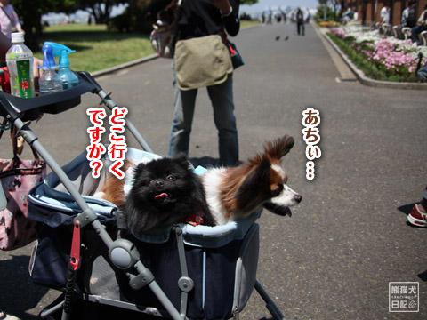 20120524_中華街3