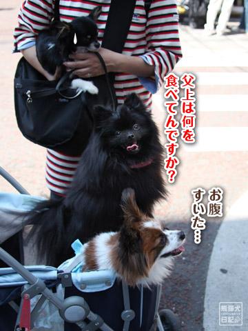 20120524_中華街8