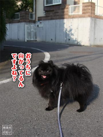 20120601_早朝7