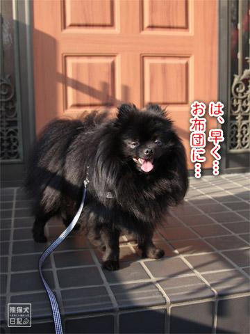 20120601_早朝9