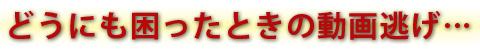 20120615_動画逃げ