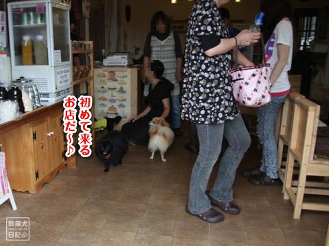 20120627_モコモコ3