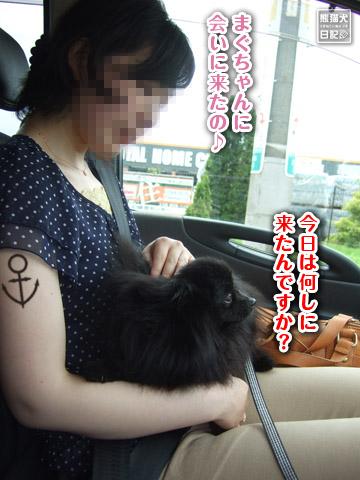 20120627_モコモコ2