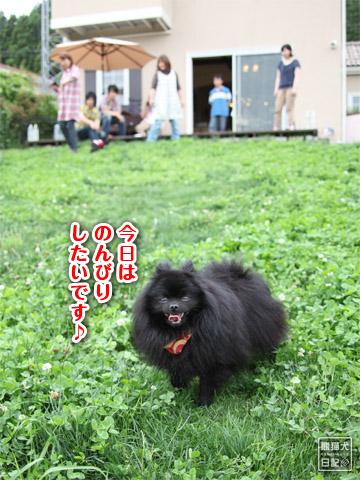 20120627_モコモコ10