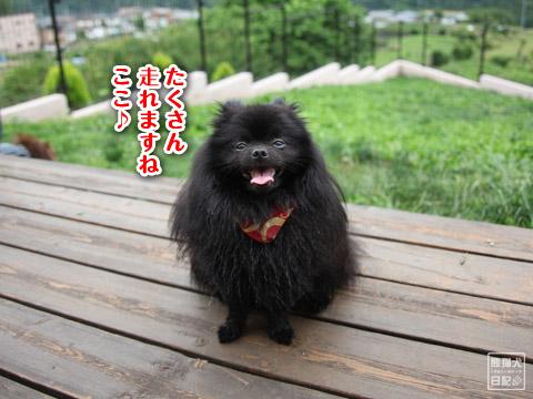 20120627_モコモコ9