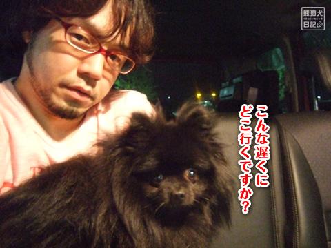 20120906_子作りへ1