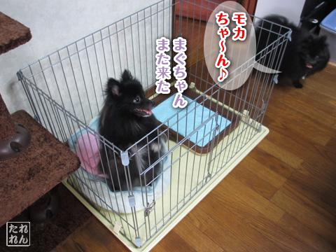 20120908_子作り合宿6