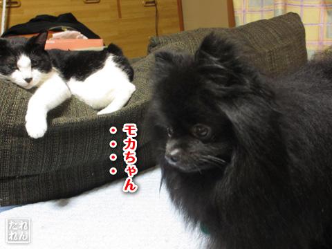 20120908_子作り合宿1