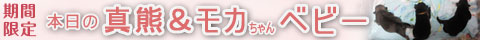 20120908_赤子バナー