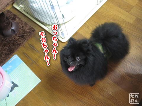 20120909_子作り合宿2
