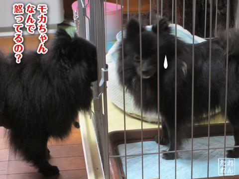 20120909_子作り合宿3
