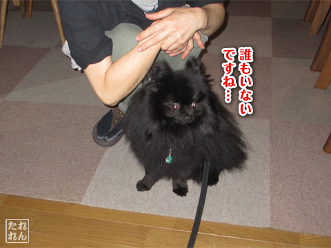 20120910_子作り合宿5