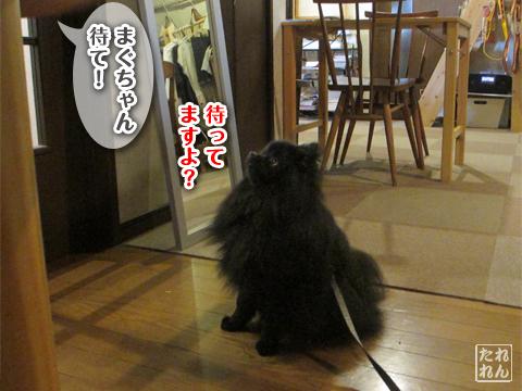 20120910_子作り合宿3
