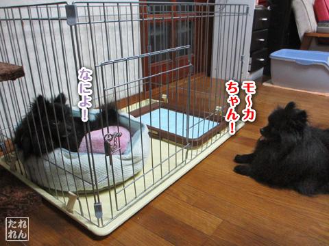 20120911_子作り合宿4